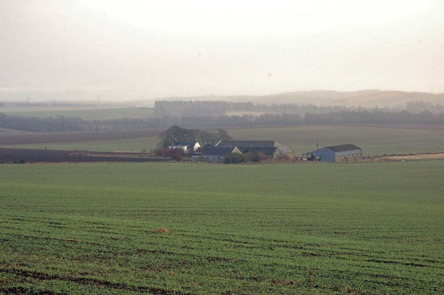 Ladybog farm