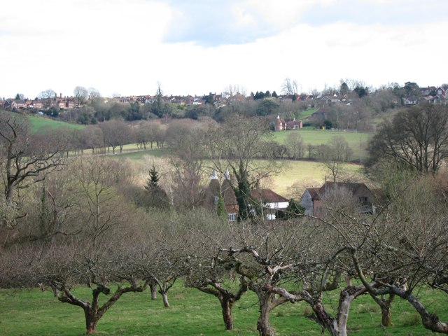 Orchard and oast houses in Burwash, Sussex