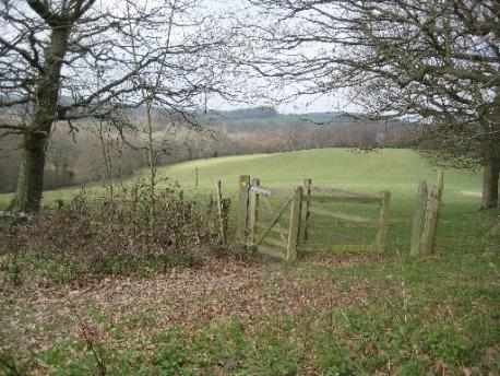 Countryside near Wadhurst, Sussex (via argus.co.uk)
