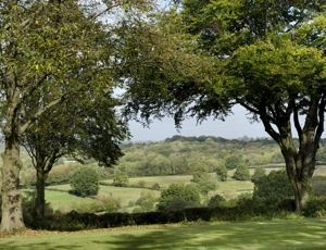 Countryside near Mayfield, Sussex (via countrylife.co.uk)