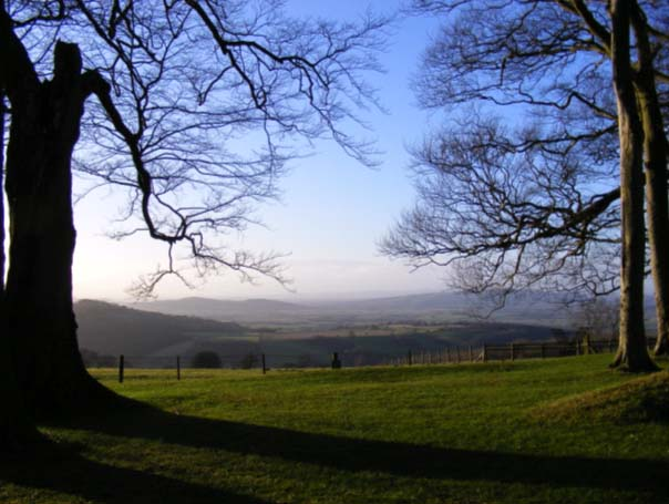 Vale of Evesham (via eveshamtown.co.uk)