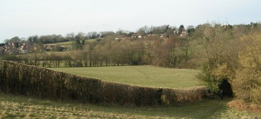 Fields south of Ticehurst, Sussex (via geograph.co.uk)